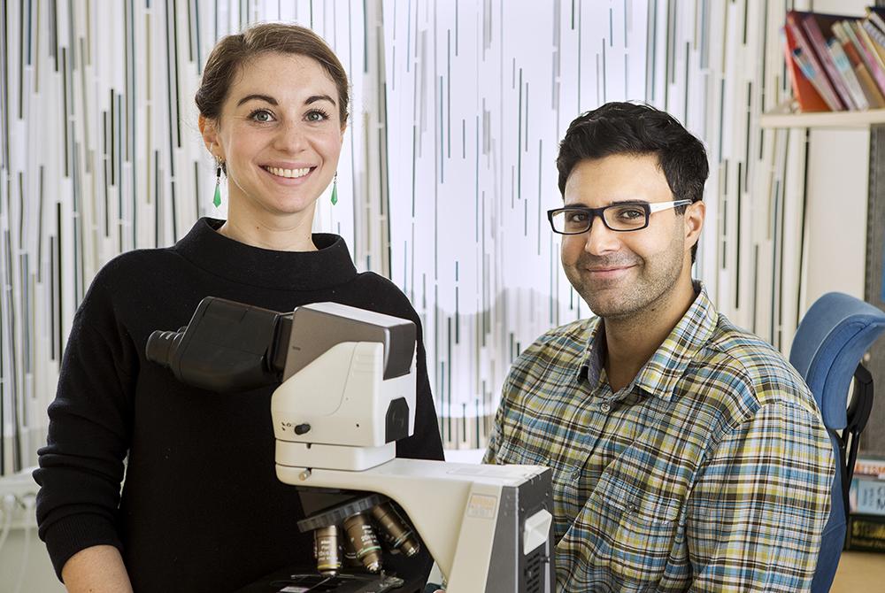 Louise Steinhoff och Ayman Fakih, ST-läkare hos RMV. Foto: Thomas Henrikson