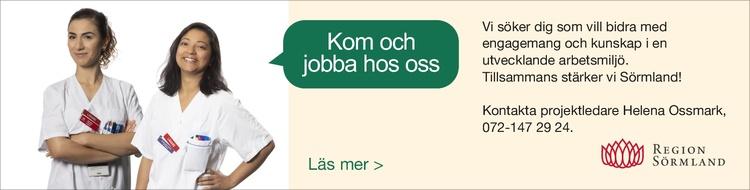 Sörmland banner